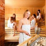 Sauna stones – shopping guide