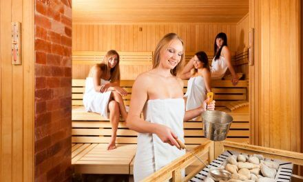 Sauna stones – shopping guide